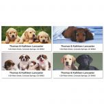 Puppy Love Deluxe Address Labels  (4 Designs)