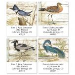 Seabirds Select Address Labels  (4 Designs)