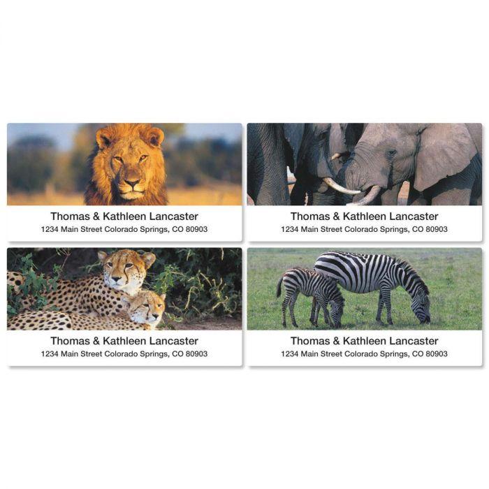 Wildlife of Africa Deluxe Address Labels  (4 designs)