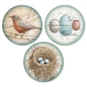 Blue Nest  Envelope Seals  (3 Designs)
