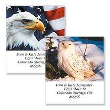 Shop Birds Labels at Colorful Images