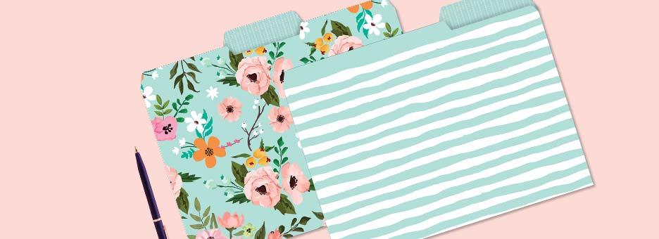 Shop File Folders at Colorful Images