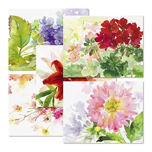 Shop Note Card Sets at Colorful Images